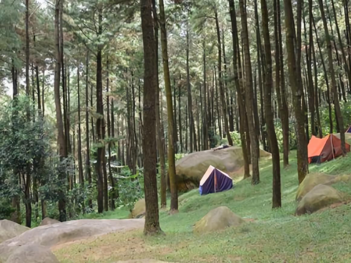 WEB Trekking Gunung Pancar-01.jpg
