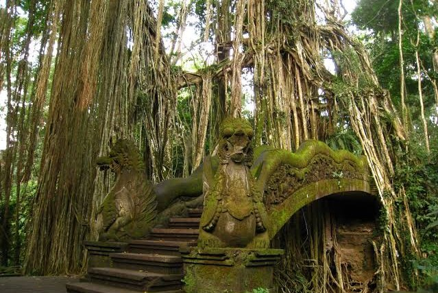 Cover_Website_Bali-06.jpg