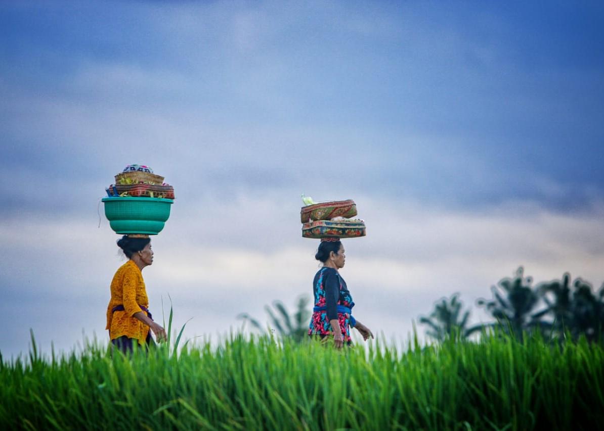 Cover Desa Wisata Sayan (2).jpeg